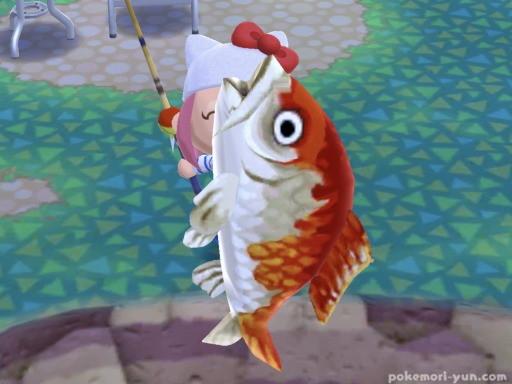 あつ森魚あげる方法