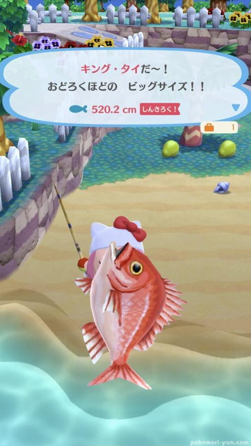 あつ 森 魚 あげる