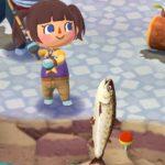 【ポケ森】イトウが釣れないと話題、効率のいい釣り方