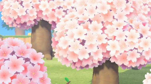 あつ森 あじさい いつ咲く
